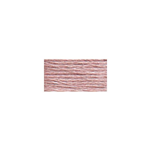 DMC 6-Strand Embroidery Floss (778)