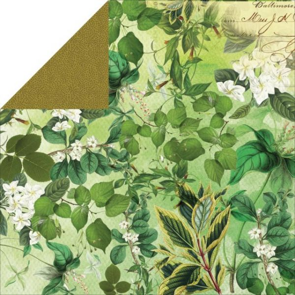 Limelight Double-Sided Cardstock