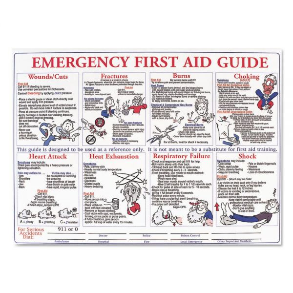 LabelMaster Emergency First Aid Guide Poster, 24 x 18