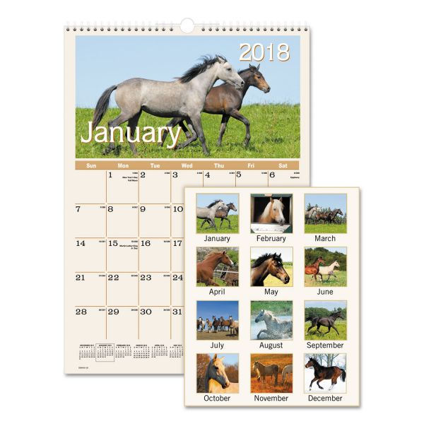 AT-A-GLANCE Horses Monthly Wall Calendar