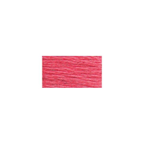 DMC Six Strand Embroidery Floss (893)