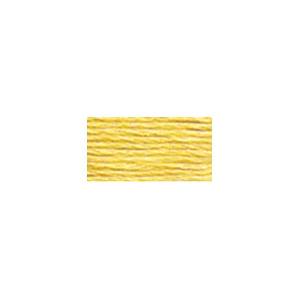 DMC Six Strand Embroidery Floss (3822)