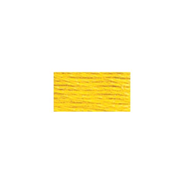 DMC Six Strand Embroidery Floss (973)
