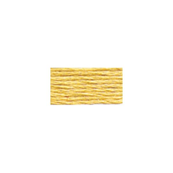 DMC Six Strand Embroidery Floss (676)